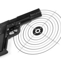 license and basic handgun training